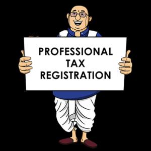 Expert Professional-Tax-Registration