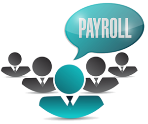 Expert Payroll Software
